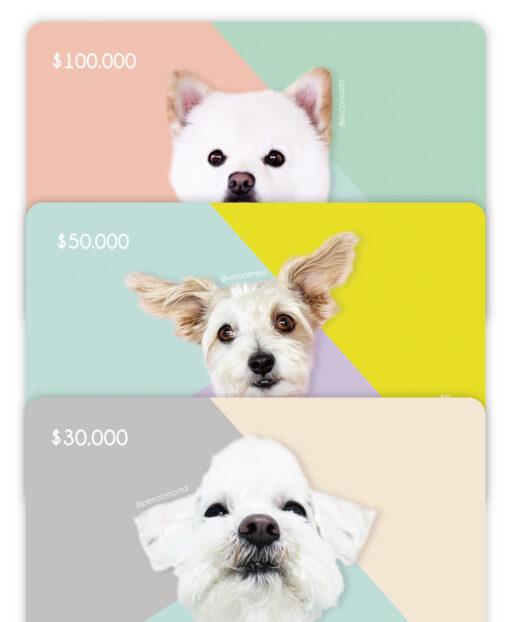 809156920af3 Bono de regalo - Wawaw   Ropa y accesorios para mascotas perros y gatos